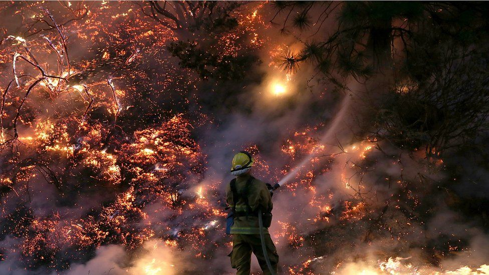 A firefighter uses a hose to douse the flames of the Rim Fire on August 24, 2013 near Groveland, California